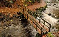 Pont au-dessus d'une rivière, en automne