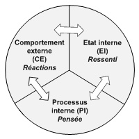 Index de computation de la PNL : Etat interne, Processus interne, Comportement externe