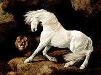Cheval blanc effrayé par un lion