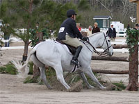 Cheval qui pile devant un obstacle, pendant un concours de CSO