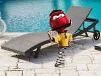 Zébulon au bord d'une piscine