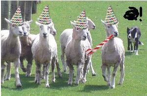 Moutons avec chapeaux et mirlitons